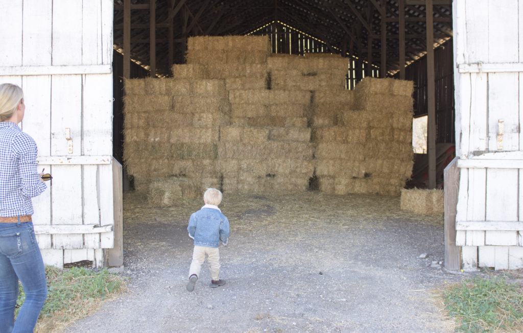 Hay Barn at Rancho San Julian