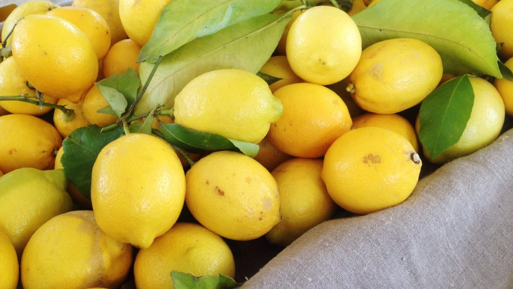 Lemons at the Hollywood farmers market